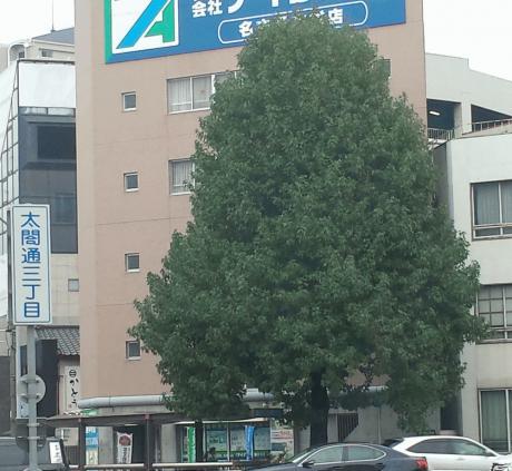 20141021_085144.jpg
